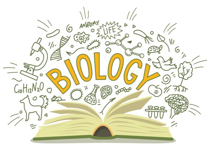 IB Biology Tuition